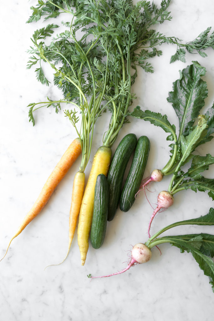 what vegetables to dip into ricotta cheese dip