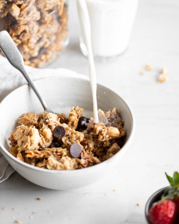 tahini granola clusters with golden raisins and dark chocolate