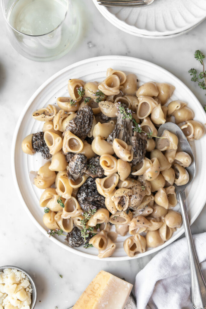 morel mushroom pasta with parmesan, cream and thyme