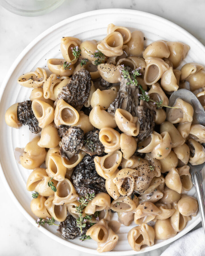 morel pasta with parmesan, cream and thyme