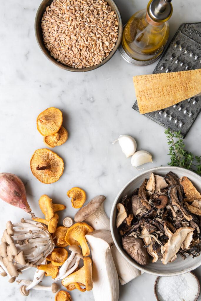 wild mushrooms, farro, dried mushrooms, shallots, parmesan, olive oil, garlic, thyme